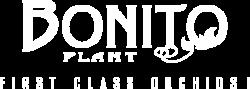 bonito-plant__light