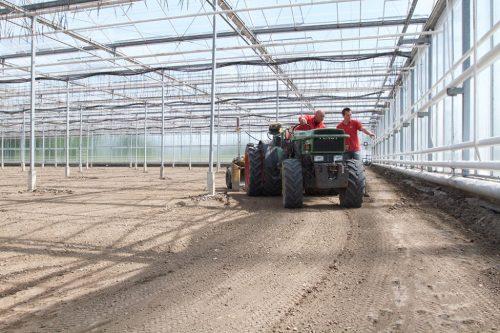egaliseren-kwekerij-de-wintertuin-2