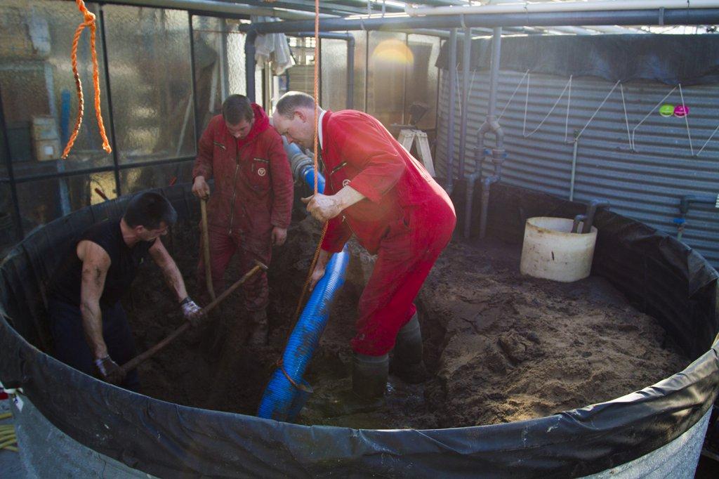 leegzuigen-zand-filter-2